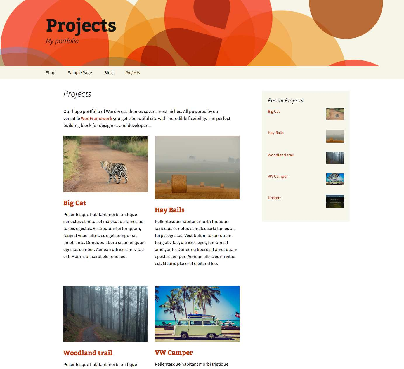 Projects by WooThemes Plugin WordPress, Download, Install