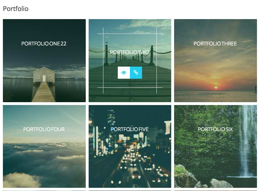 Advance Portfolio Grid Plugin WordPress, Download, Install