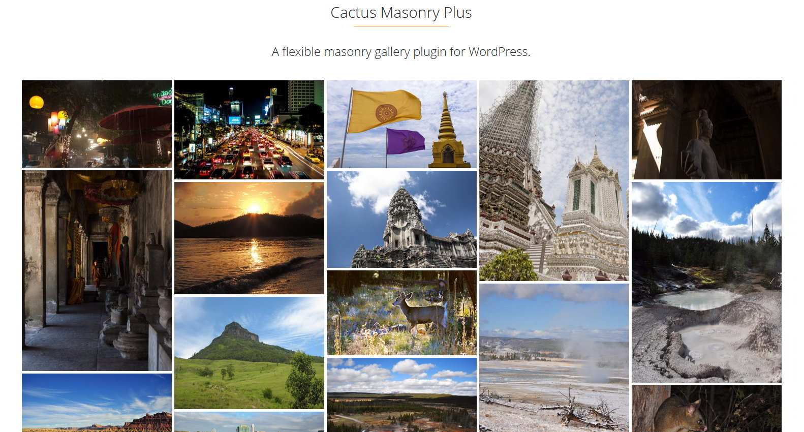 Cactus Masonry Plus Plugin WordPress