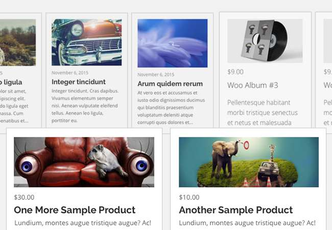 IG Posts Carousel Plugin WordPress, Download, Install