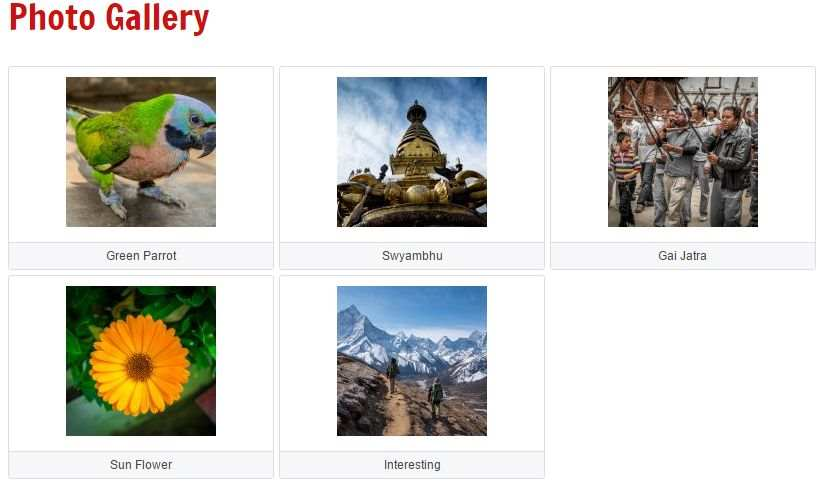 User Picture Gallery Plugin WordPress, Download, Install