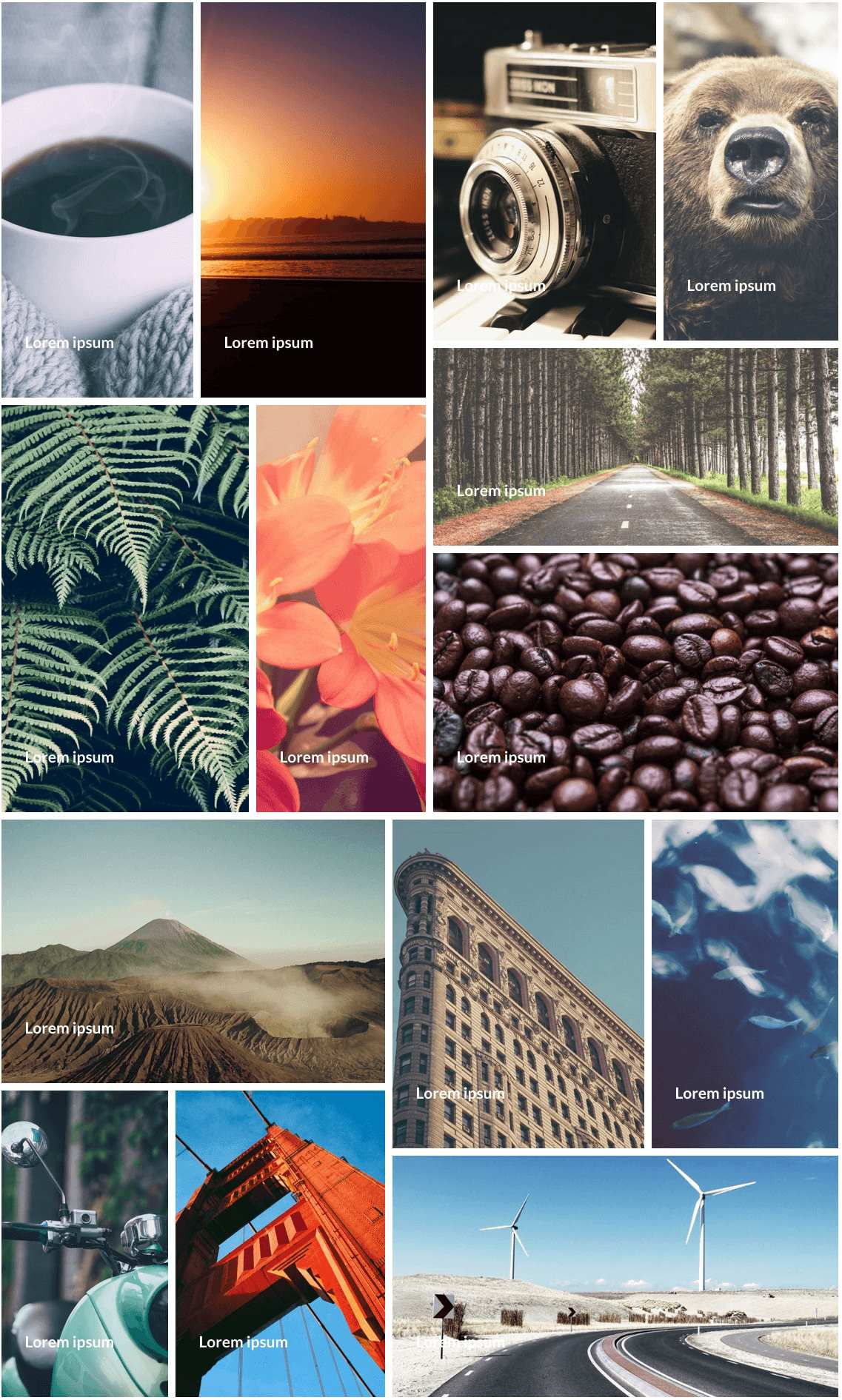 Gallery – A WordPress Modula Gallery Plugin WordPress, Download, Install