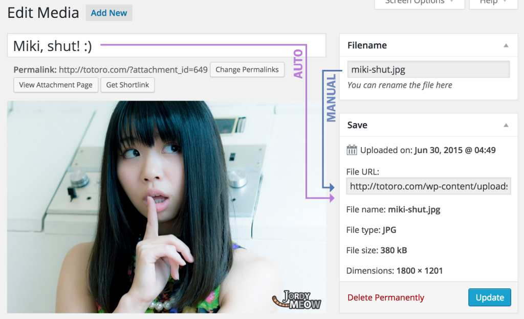 Media File Renamer Plugin WordPress