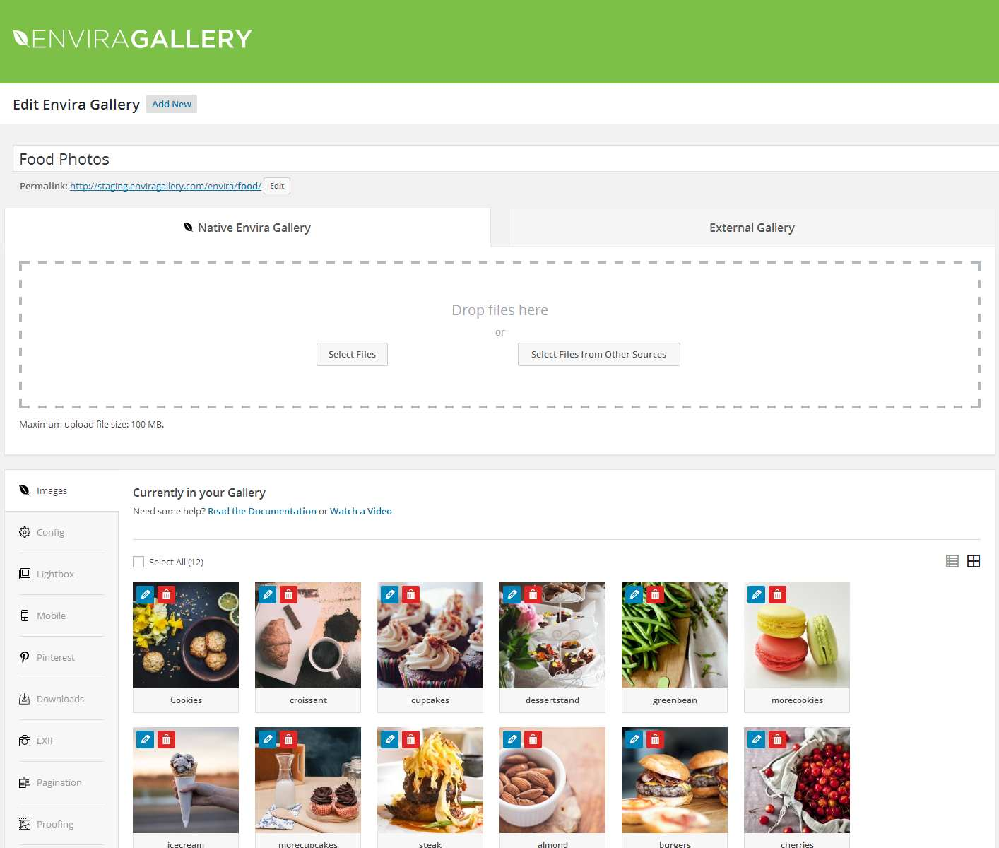 Responsive WordPress Gallery – Envira Gallery Lite Plugin WordPress, Download, Install