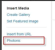 Photonic Gallery for Flickr, Picasa, SmugMug, 500px, Zenfolio and Instagram Plugin WordPress