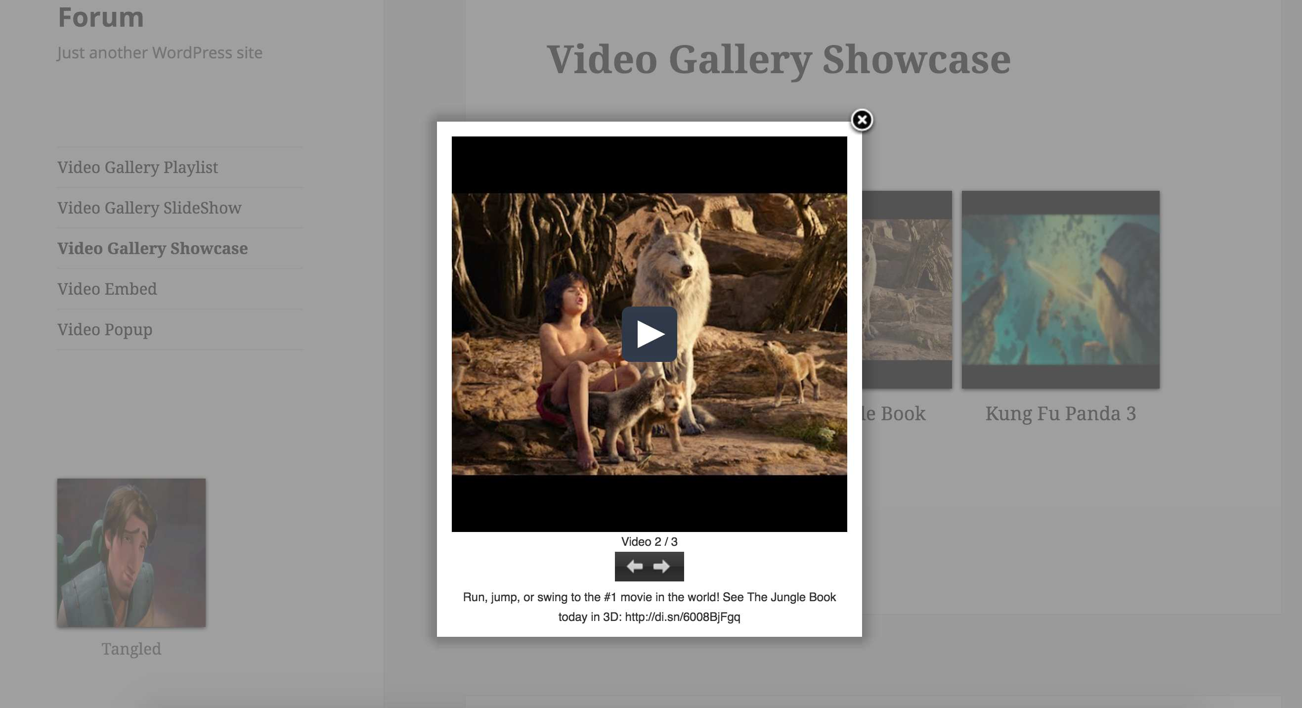 Cool Video Gallery Plugin WordPress, Download, Install