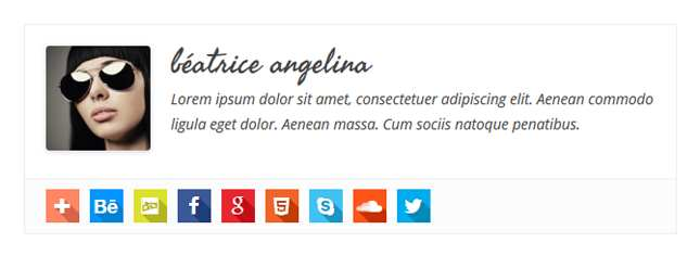Simple Author Box Plugin WordPress, Download, Install