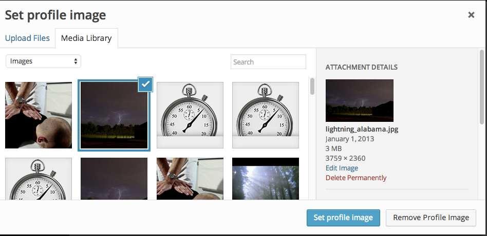 User Profile Picture Plugin WordPress