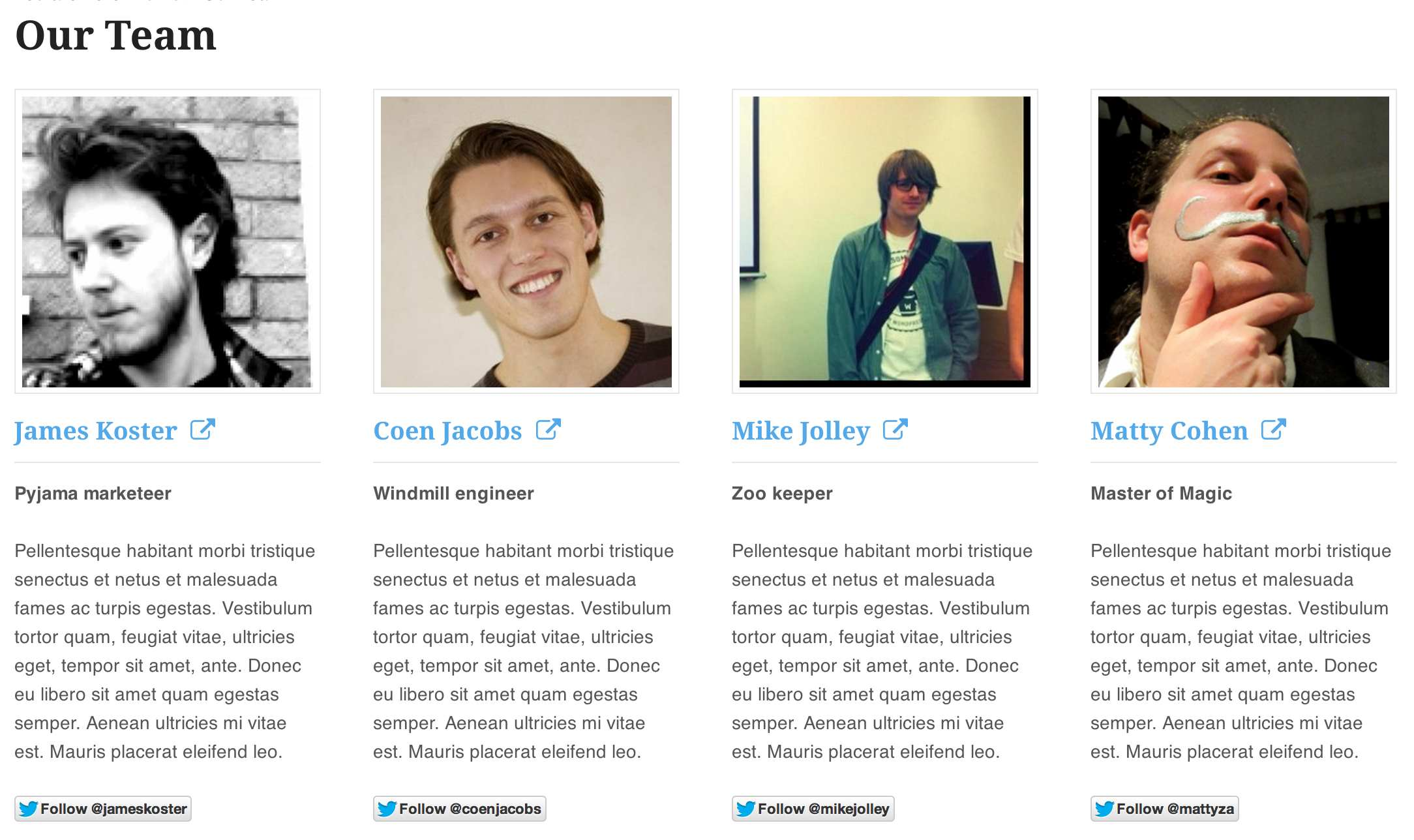 Our Team by WooThemes Plugin WordPress